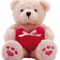 "24"" Pink Teddy Bear with Heart shape Pillow."