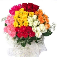 Bunch of 60 Mix Roses